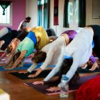 detox yoga retreat 2